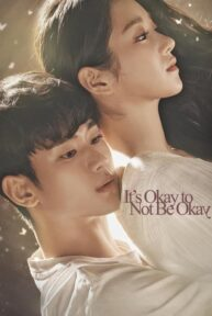 its okay to not be okay 305 poster