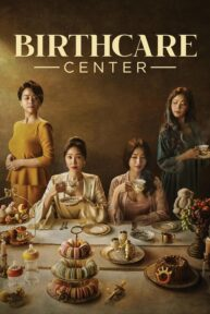 birthcare center 652 poster