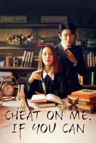 cheat on me if you can 749 poster